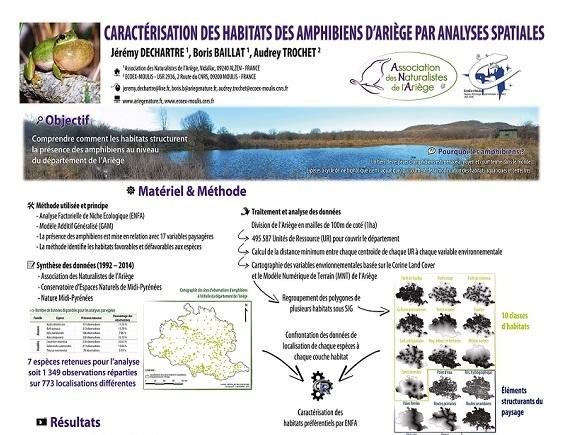 poster_habitat_amphibiens