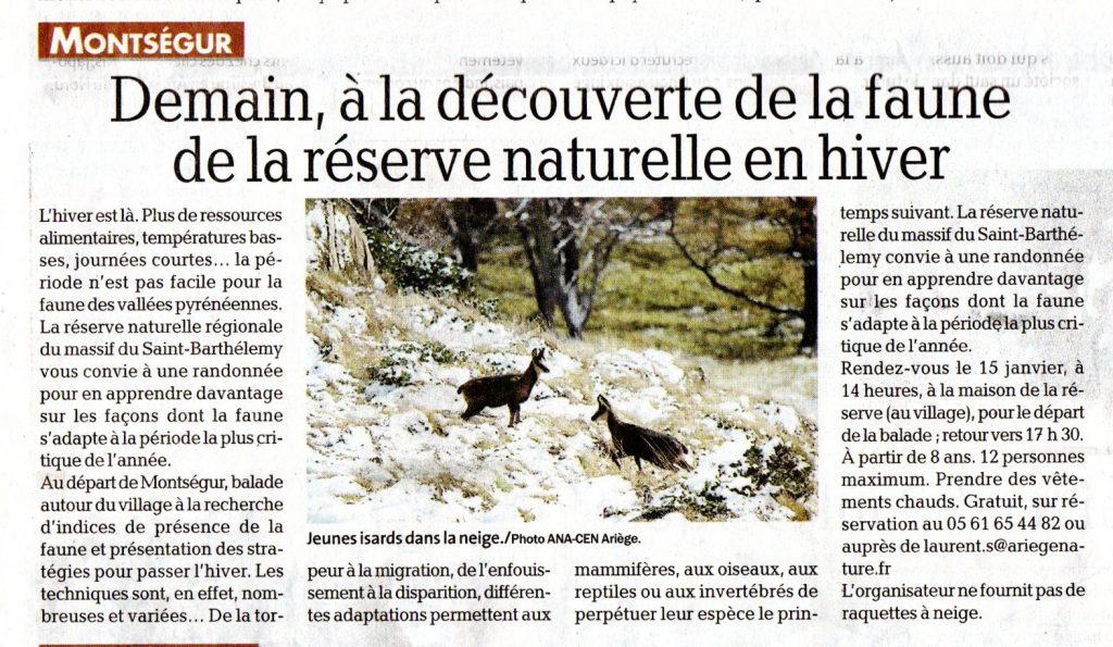 DDM_14012020_A la découverte de la faune de la réserve naturelle en hiver