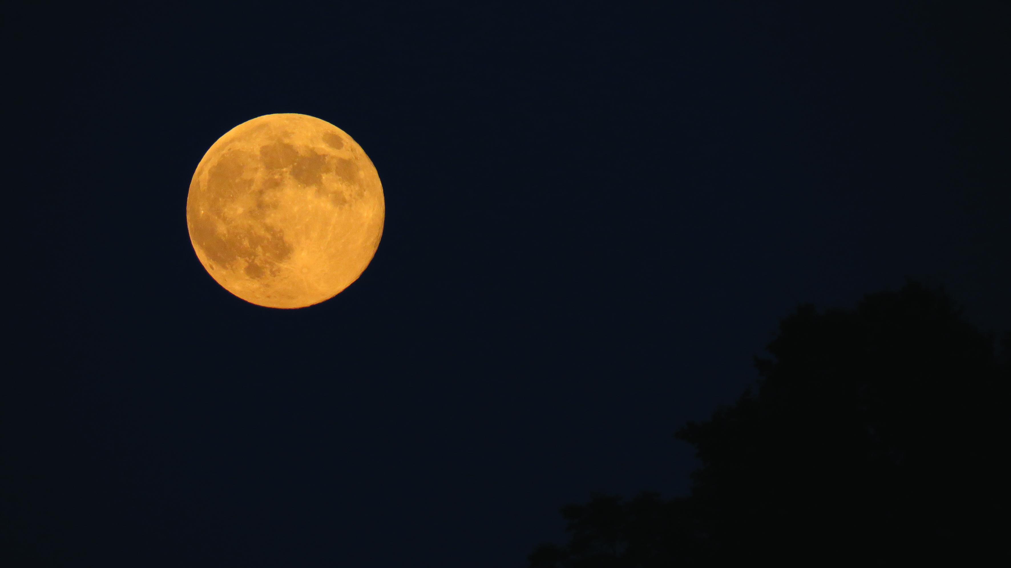 Lune rousse-Julien Vergne