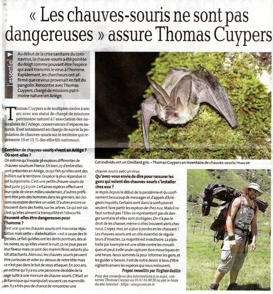 La Dépêche du midi - 9 avril 2020 - Les chauves-souris ne sont pas dangereuses