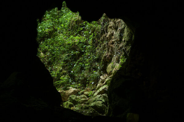 Grotte - Thomas Cuypers